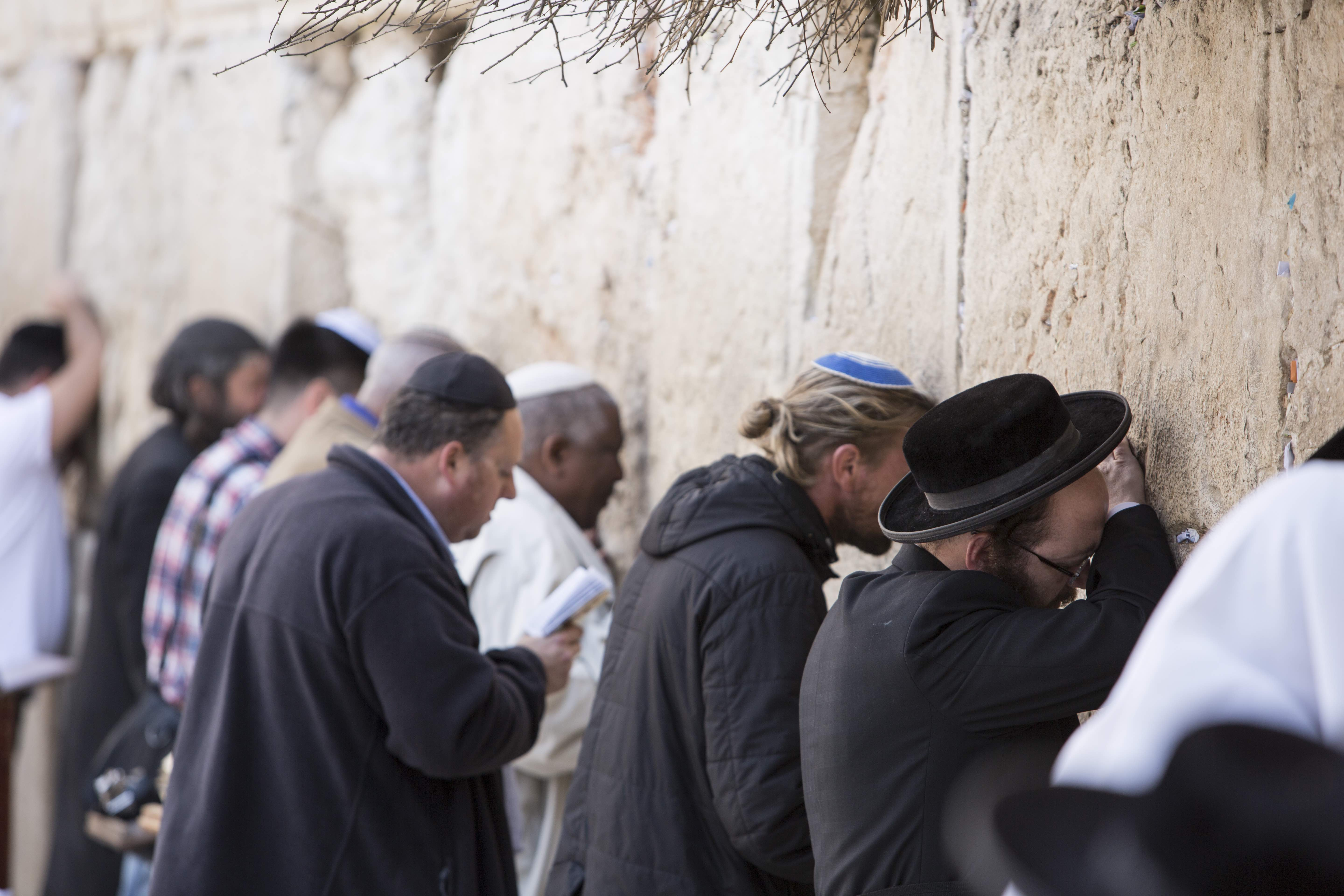 Israel a homeland for all jews sciox Image collections